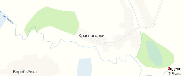 Улица Механизаторов на карте деревни Красногорки Брянской области с номерами домов