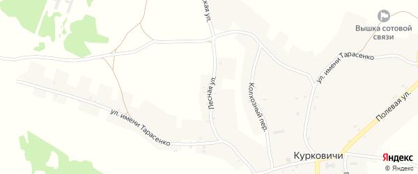 Лесная улица на карте села Курковичи с номерами домов