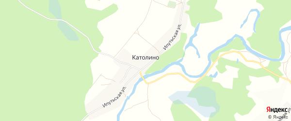 Карта села Католино в Брянской области с улицами и номерами домов