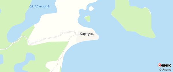 Карта деревни Картунь города Осташкова в Тверской области с улицами и номерами домов