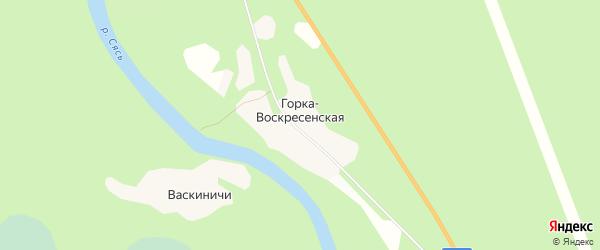 Карта Горки-Воскресенской деревни в Ленинградской области с улицами и номерами домов
