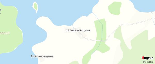Карта деревни Сальниковщина города Осташкова в Тверской области с улицами и номерами домов