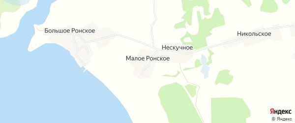 Карта деревни Малого Ронского города Осташкова в Тверской области с улицами и номерами домов