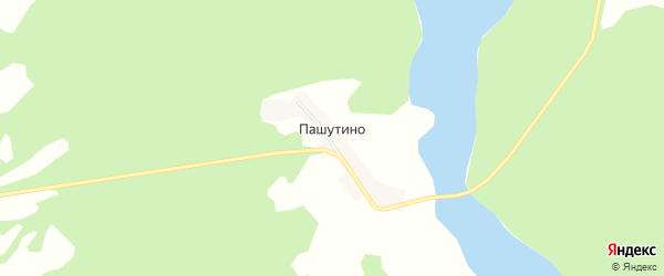 Карта деревни Пашутино в Тверской области с улицами и номерами домов
