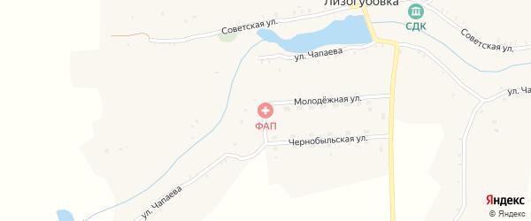 Чернобыльская улица на карте села Лизогубовки с номерами домов
