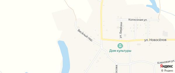 Веселый переулок на карте села Староселья с номерами домов