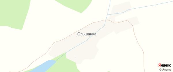 Центральная улица на карте деревни Ольшанки с номерами домов