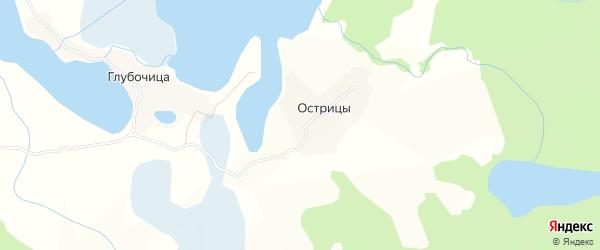 Карта деревни Острицы города Осташкова в Тверской области с улицами и номерами домов
