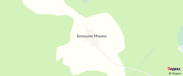 Карта деревни Большие Мошки в Тверской области с улицами и номерами домов