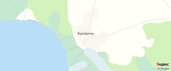 Карта деревни Буковичи города Осташкова в Тверской области с улицами и номерами домов