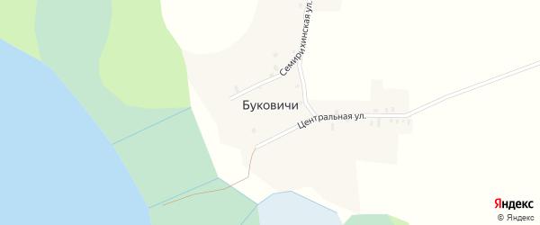 Центральная улица на карте деревни Буковичи с номерами домов