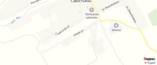 Новая улица на карте села Савостьяны с номерами домов