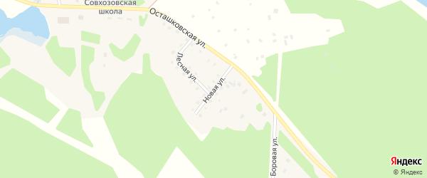 Новая улица на карте поселка Сиговка с номерами домов