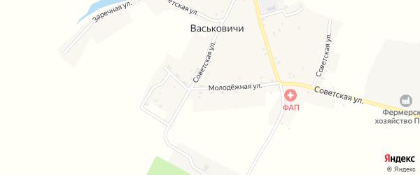 Молодежная улица на карте села Васьковичи Брянской области с номерами домов