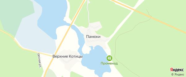 Карта деревни Панюки города Осташкова в Тверской области с улицами и номерами домов
