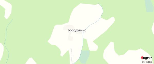 Карта деревни Бородулино в Тверской области с улицами и номерами домов