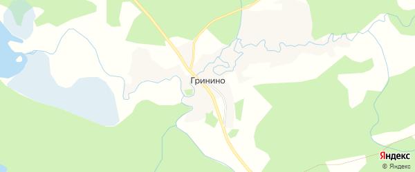 Карта деревни Гринино города Осташкова в Тверской области с улицами и номерами домов