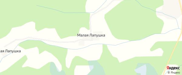 Карта деревни Малой Лапушки в Тверской области с улицами и номерами домов