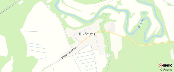 Карта деревни Шибенца в Ленинградской области с улицами и номерами домов