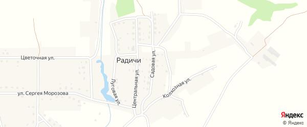 Садовая улица на карте деревни Радичей с номерами домов