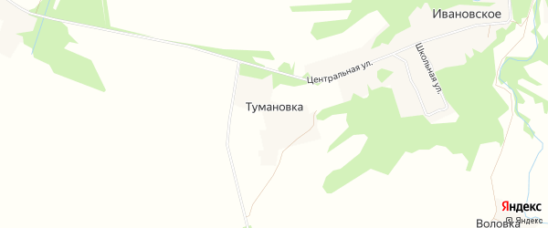 Карта деревни Тумановки в Смоленской области с улицами и номерами домов