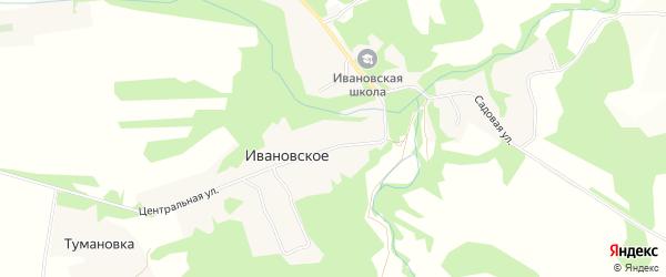 Карта деревни Ивановское (Астапковичское с/пос) в Смоленской области с улицами и номерами домов