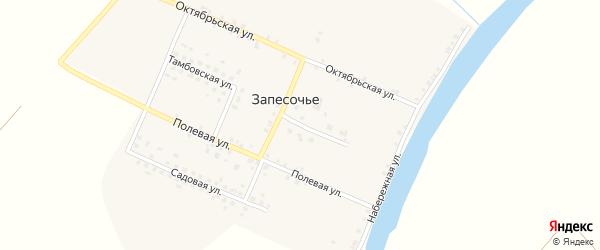 Центральная улица на карте поселка Запесочья Брянской области с номерами домов