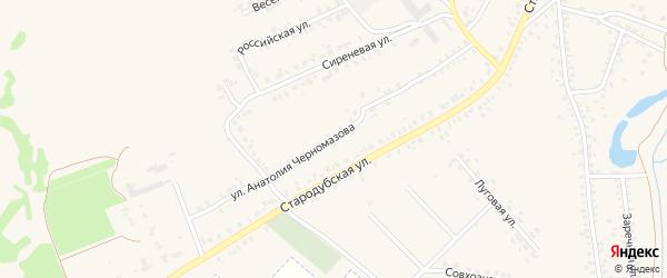 Улица Анатолия Черномазова на карте Почепа с номерами домов