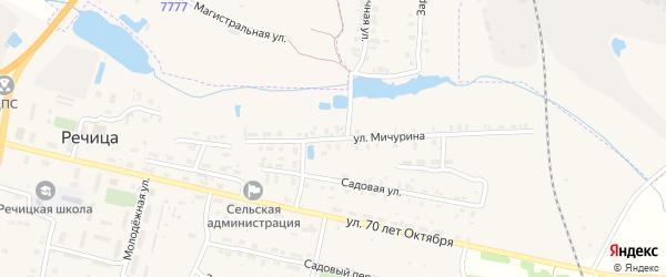 Улица Мичурина на карте поселка Речицы с номерами домов