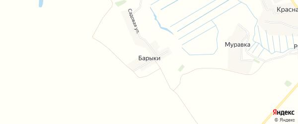 Карта деревни Барыки в Брянской области с улицами и номерами домов