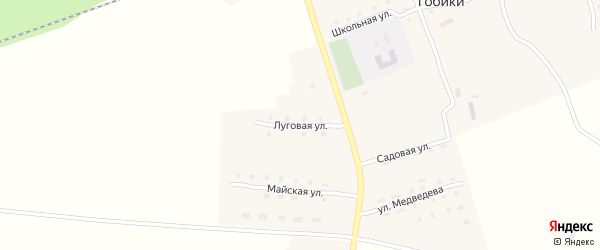 Луговая улица на карте поселка Гобики с номерами домов