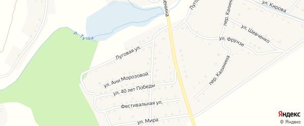 Луговой переулок на карте поселка Рогнедино с номерами домов