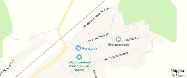 Больничная улица на карте поселка Гобики с номерами домов
