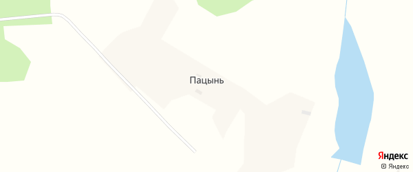 Нагорная улица на карте села Пацыни с номерами домов