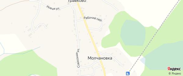 Центральная улица на карте поселка Молчановки Новгородской области с номерами домов