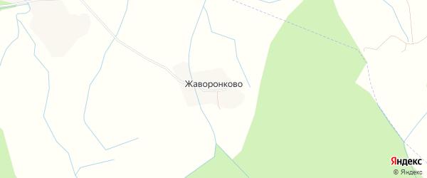 Карта деревни Жаворонково (Прогресское с/п) в Новгородской области с улицами и номерами домов