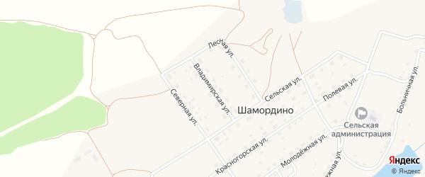 Владимирская улица на карте деревни Шамордино с номерами домов
