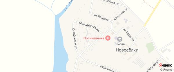 Школьный переулок на карте села Новоселки Брянской области с номерами домов