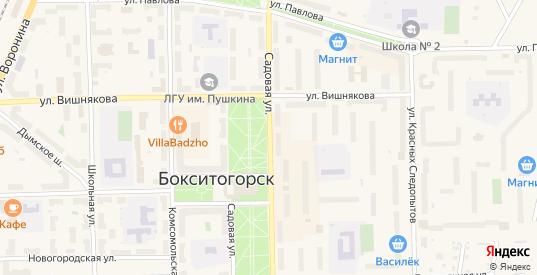 Садовая улица в Бокситогорске с номерами домов на карте. Спутник и схема онлайн