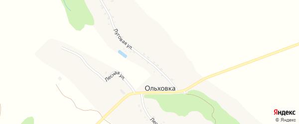 Луговая улица на карте деревни Ольховки с номерами домов