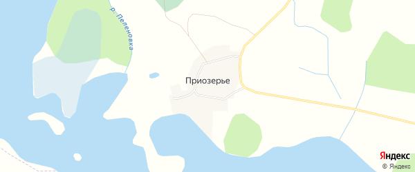 Карта деревни Приозерья в Новгородской области с улицами и номерами домов