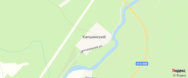 Карта Капшинский поселка в Ленинградской области с улицами и номерами домов