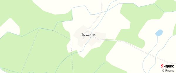 Карта деревни Прудника в Новгородской области с улицами и номерами домов