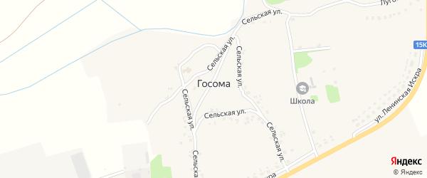 Улица Дружбы на карте села Госомы Брянской области с номерами домов