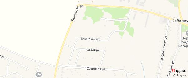 Вишневая улица на карте села Глинищево Брянской области с номерами домов