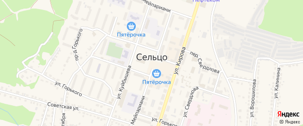 Территория сдт 4 на карте Сельца с номерами домов