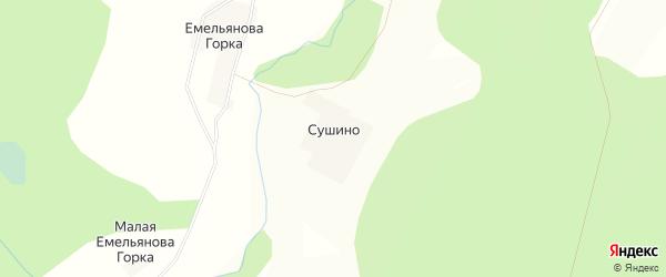 Карта деревни Сушино в Тверской области с улицами и номерами домов