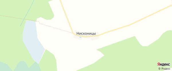 Карта деревни Нисконицы в Тверской области с улицами и номерами домов