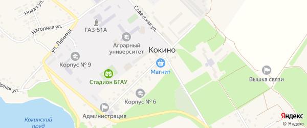 Цветочная улица на карте села Кокино с номерами домов