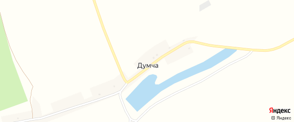 Центральная улица на карте поселка Думчи Брянской области с номерами домов